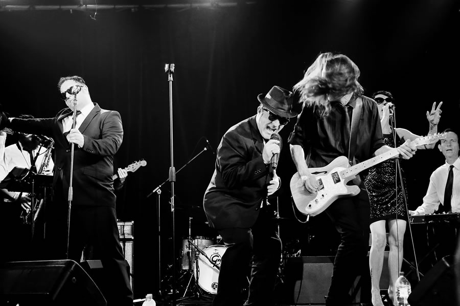 Blues Band for hire in Adelaide